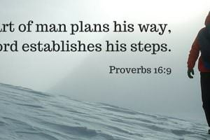 The heart of man plans