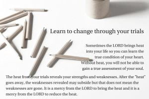 Learn from your trials