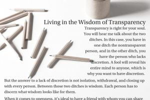 Living in the Wisdom of Transparency