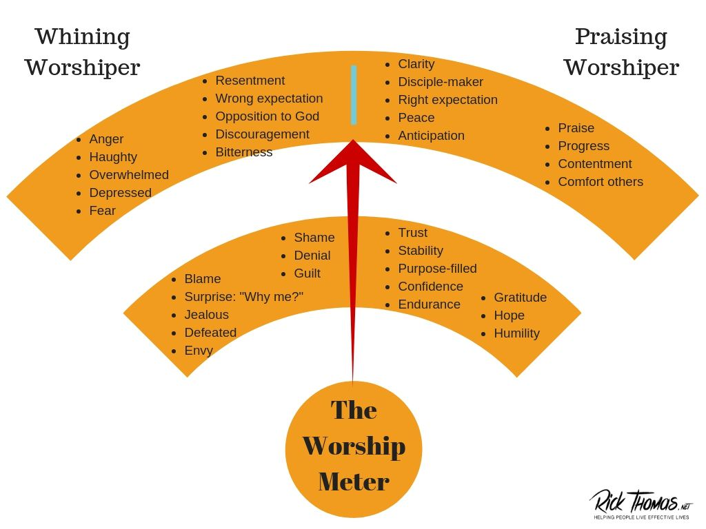 The Whine Meter